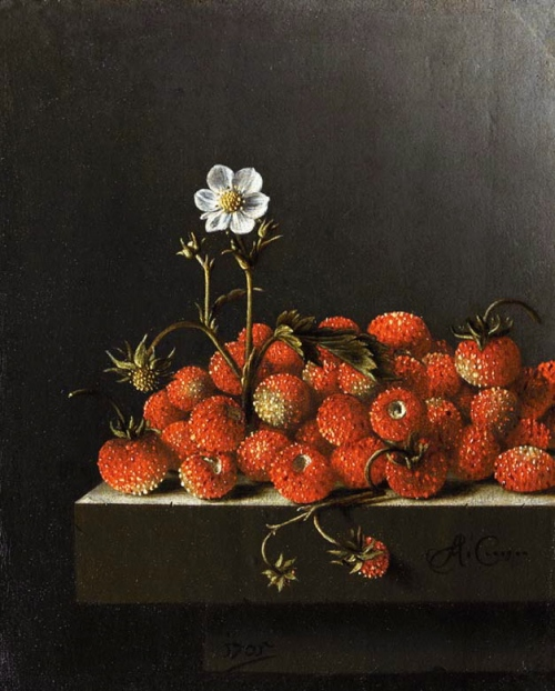 CoorteStrawberries1705TheHagueMhuisW