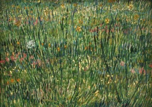 20080801_van_gogh_grass
