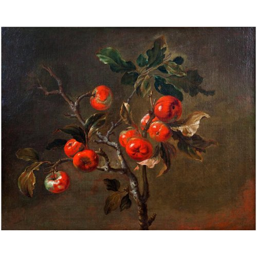 Antoine-Berjon-x7896-Still-Life-Apples-pic-1A-2048-10.10-678-f