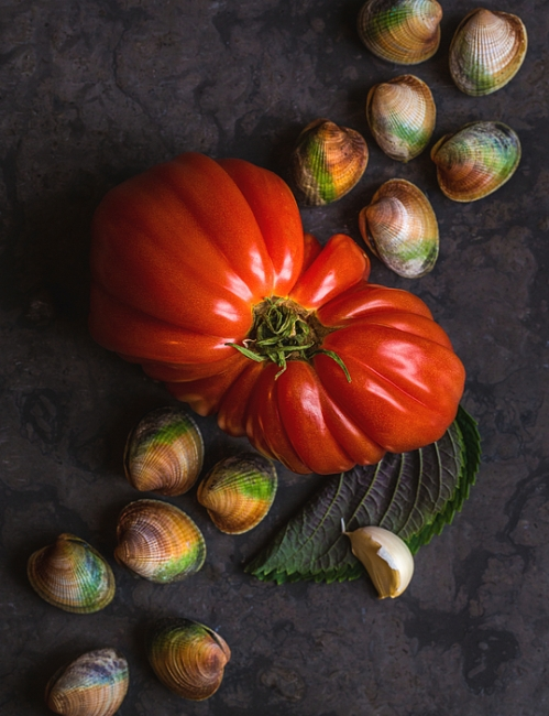 still-life-with-tomato-and-clams-alan-shapiro.jpg