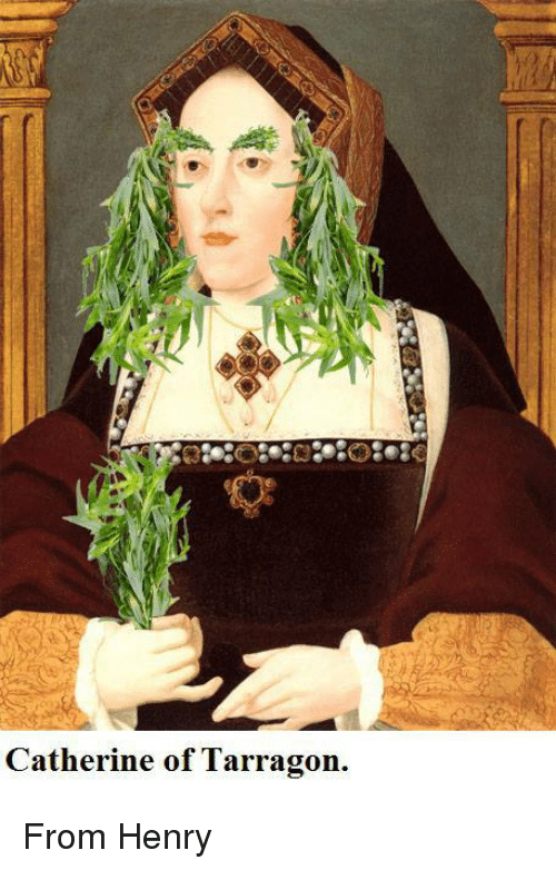 catherine-of-tarragon-from-henry-2975552